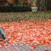 9 Top-Tipps für Herbst-Touren durch das Cuxland